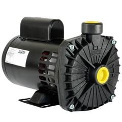 Bomba Centrífuga Multiuso Cp-6r 1cv Bivolt - Dancor