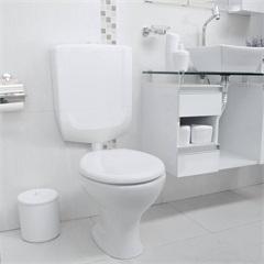 Caixa De Descarga Baixa Para Bacia Sanitária Branca Branco