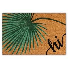 Capacho em Fibra de Coco Hi 40x60cm Preto E Verde - Casanova