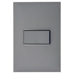 Conjunto Interruptor Simples 10a 4x2 Cinza - Pial Legrand