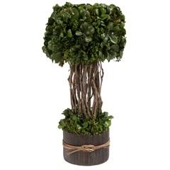 Jardineira Nanc 36cm Verde