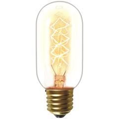 Lâmpada Incandescente com Filamento de Carbono T45 40w 110v 2200k Luz Amarela