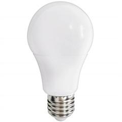 Lâmpada Led Bulbo 9w Bivolt 6500k Luz Branca