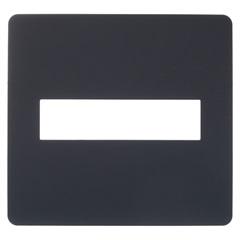 Placa 4x4 com 2 Postos Orion Stellar Black - Schneider