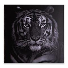 Placa Decorativa em Madeira Animals 29cm Tigre - Casa Etna
