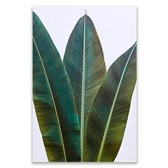Placa Decorativa em Madeira Folhagem 1 44x30cm - Casa Etna
