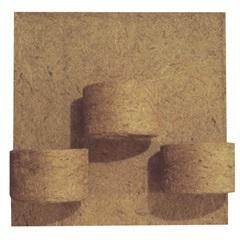 Placa em Fibra de Côco 30x32cm Natural com 3 Vasos - Agrofor
