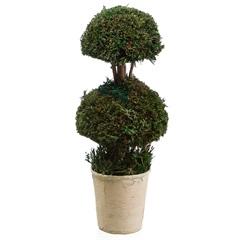 Planta Artificial Nanc 35cm Verde - Casa Etna