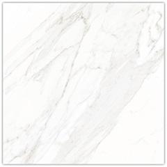 Porcelanato Borda Reta Calacata Satin 83x83cm - Biancogres