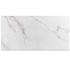Porcelanato Esmaltado Polido Borda Reta Place Branco 59x118cm - Eliane