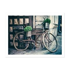 Quadro Telado em Mdf Old Bicicleta 50x70cm - Casanova
