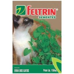 Semente de Erva dos Gatos com 150mg - Feltrin