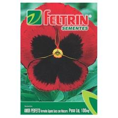 Semente de Flor Amor Perfeito Vermelho 100mg - Feltrin