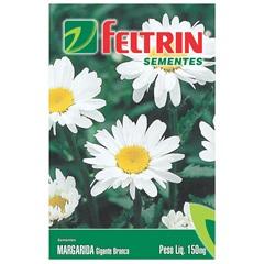 Semente de Flor Margarida Gigante Branca 150mg - Feltrin