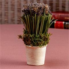 Vaso Decorativo com Mini Flor 12cm Creme E Lilás - Casa Etna
