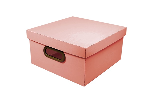 Caixa Organizadora com Tampa Linho Coral 15x29cm - Dello