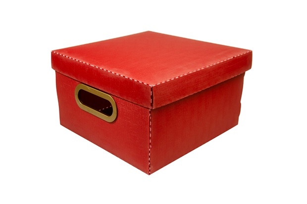 Caixa Organizadora com Tampa Linho Vermelha 15x25cm - Dello