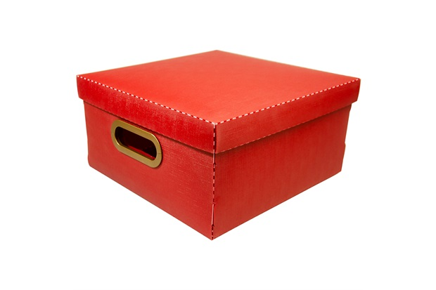 Caixa Organizadora com Tampa Linho Vermelha 15x29cm - Dello
