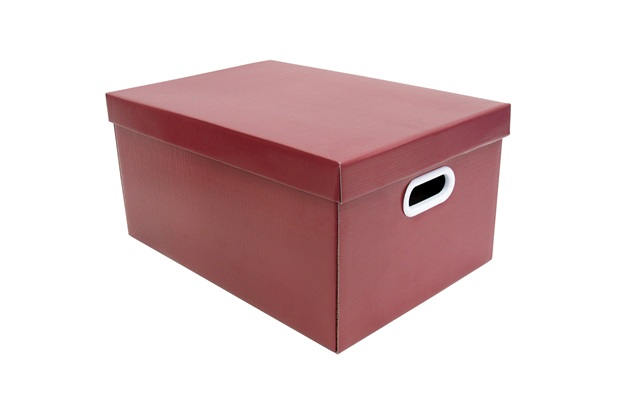 Caixa Organizadora Pratika 23x32cm Vermelha - Boxgraphia