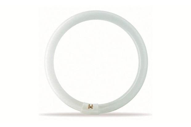 Lâmpada Fluorescente Circular Tle 40w-54 127v - Philips