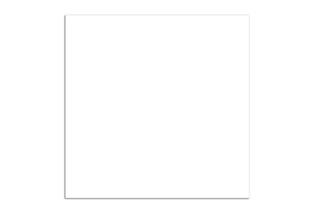Piso Cerâmico Brilhante Retificado Everest Branco 56x56cm - Rox