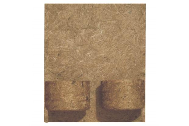 Placa em Fibra de Côco 30x32cm Natural com 2 Vasos - Agrofor