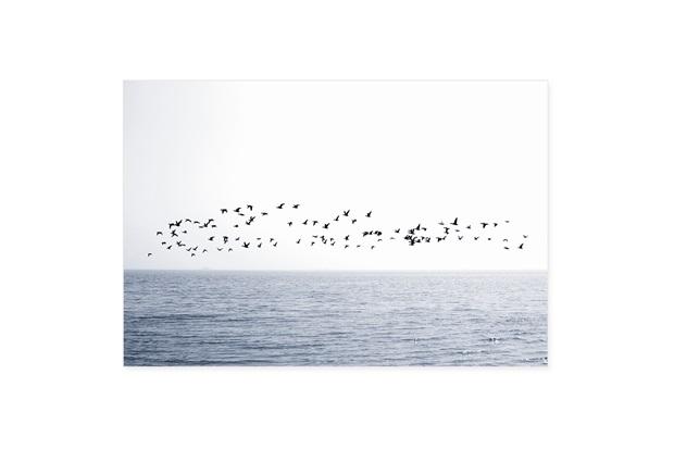 Quadro Telado Oceano 50x70cm - Casanova