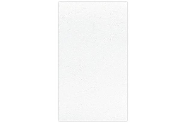 Revestimento Esmaltado Brilhante Borda Bold Design Rd-32650 32x56cm - Incefra